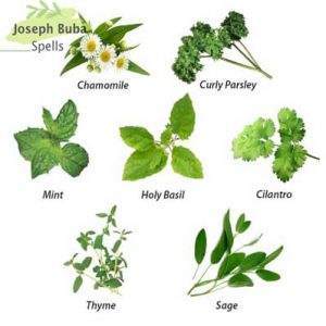 Herbal Remedies and apothecary